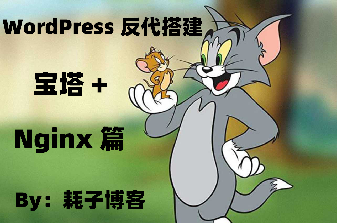 WordPress 反代搭建 -- 宝塔 + Nginx 篇-耗子博客
