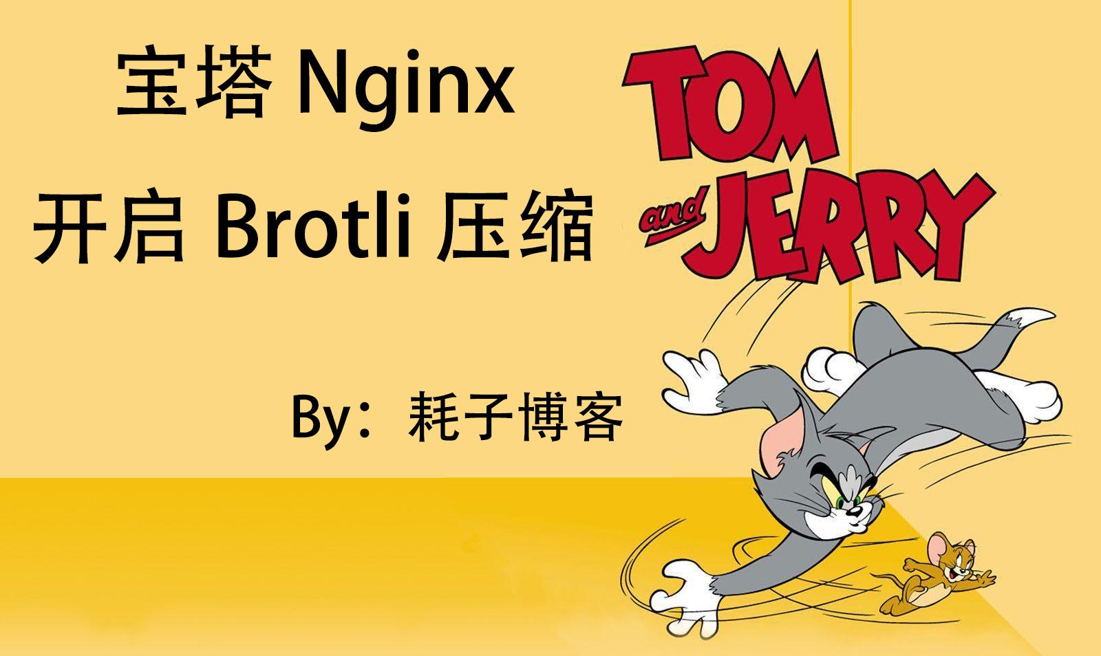 宝塔 Nginx 开启 Brotli 压缩-耗子博客